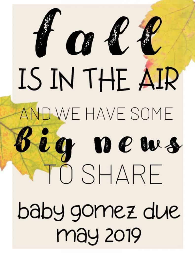 fall is in the air and we have some big news to share baby coming soon